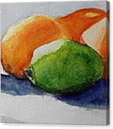 Juices Canvas Print