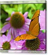 Julia Butterfly 2 Canvas Print