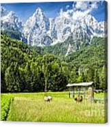 Julian Alps Farm Canvas Print
