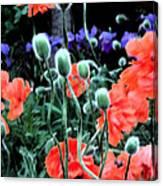 Julia's Garden II Canvas Print