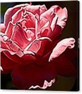 Julie Pinked Canvas Print