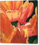Julie's Tulips Canvas Print