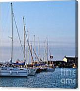 June Morning - Lyme Regis Harbour Canvas Print
