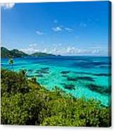 Jungle And Turquoise Water Canvas Print