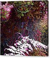 Jungle Red Tints Canvas Print