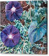 Juniper And Flowers Canvas Print