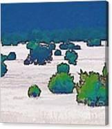 Juniper Field Canvas Print