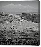 Juniper Hills To Snowy Arctic Peaks Black And White Canvas Print