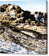 Jupiter Terrace Yellowstone Np 1928 Canvas Print