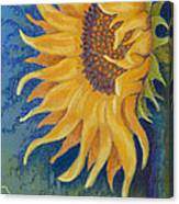 Just Another Sunflower Canvas Print