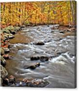 Just Going With The Flow Canvas Print