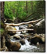 Just Outside Of Gatlinburg Canvas Print