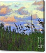 Just Over The Dune Canvas Print