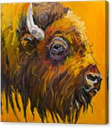 Just Sayin Bison Canvas Print