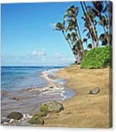 Ka'anapali Beach Canvas Print