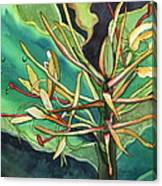 Kahili Ginger Canvas Print