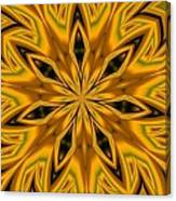 Kaleidoscope 14 Canvas Print