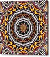 Kaleidoscope 41 Canvas Print