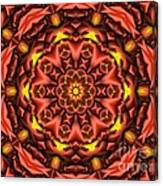 Kaleidoscope 42 Canvas Print