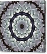Kaleidoscope 63 Canvas Print