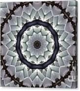 Kaleidoscope 63 Canvas Print