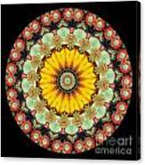 Kaleidoscope Ernst Haeckl Sea Life Series Canvas Print