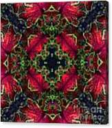 Kaleidoscope Made From An Image Of A Coleus Plant Canvas Print