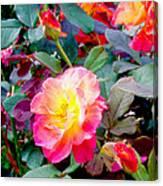 Kaleidoscope Of Roses Canvas Print