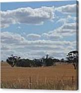 Kalgoorlie Countryside Canvas Print