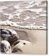 Kamaole Beach Rock Canvas Print