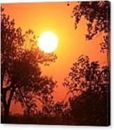 Kansas Golden Sunset With Trees Canvas Print