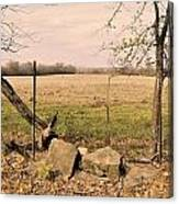 Kansas Prairie Canvas Print