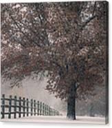Kansas Snowstorm - Tree And Fence Canvas Print
