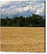 Kansas Wheat Field 5a Canvas Print