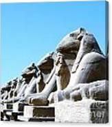 Karnak Temple Statue 14 Canvas Print