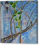 Kathy's Wall And Vine Canvas Print