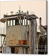 Katrina Ghost Boat And Pelicans Canvas Print