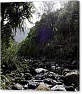 Kauai River Canvas Print