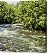 Kayaking On Gull River Canvas Print