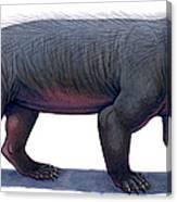 Kayentatherium, A Mammal-like Canvas Print