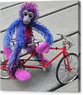 Toy Monkey On Toy Bike Canvas Print