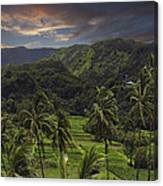 Keanae Morning Canvas Print