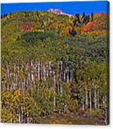 Kebler Pass Panorama Canvas Print