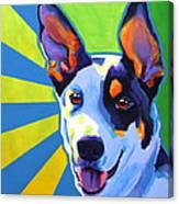 Kelpie - Oakey Canvas Print