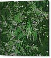 Kentucky Landscape Canvas Print
