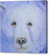 Kermode Bear Canvas Print