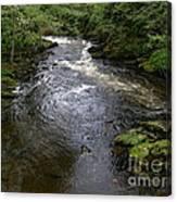 Ketchikan River Canvas Print