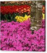 Keukenhof Floral Strata Canvas Print