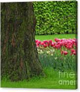 Keukenhof Gardens 23 Canvas Print
