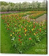 Keukenhof Gardens 29 Canvas Print